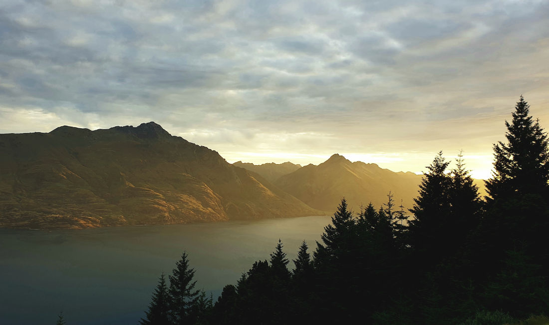 Sonnenuntergang hinter Tannenbäumen am See